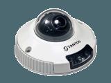 IP камера купольная Tsi-Dvm221F 3.6mm